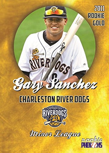 2011 GARY SANCHEZ MINOR LEAGUE ROOKIE CHARLESTON RIVERDOGS GOLD IN A ONE TOUCH MAGNETIC - Shops In Charleston