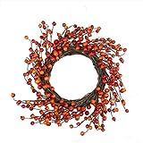 "Northlight 14"" Autumn Harvest Decorative Artificial Orange and Red Berry Wreath - Unlit"