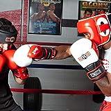 Ringside Pro Style IMF Tech Boxing Training