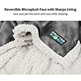 """KritterWorld Pet Dog Cat Puppy Kitten Micro plush Sherpa Snuggle Blanket for Couch, Car, Trunk, Cage, Kennel, Dog House, 45"""" x 30"""" Grey/Latte"""