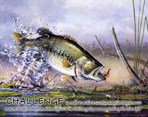 Amazon Com Fishing Motivational Poster Art Print Large Mouth Bass Walley Muskie Lures Poles 11x14 Wall Decor Pictures Posters Prints