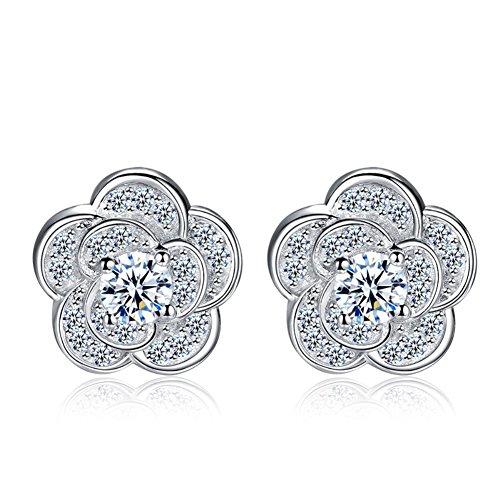 ER-20143C1 New Style Silver Plating Women's Earring