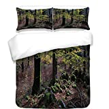 3Pcs Duvet Cover Set,Forest,Natural Scenery Trees Autumn Season in Woods Wilderness Rural Growth Eco Photo,Green Light Pink,Best Bedding Gifts for Family/Friends