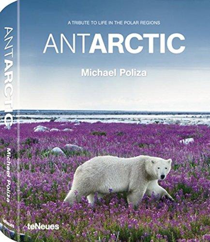 Antarctic: A Tribute to Life in the Polar Regions (David De Rothschild)
