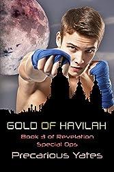 Gold of Havilah (Revelation Special Ops Book 3)