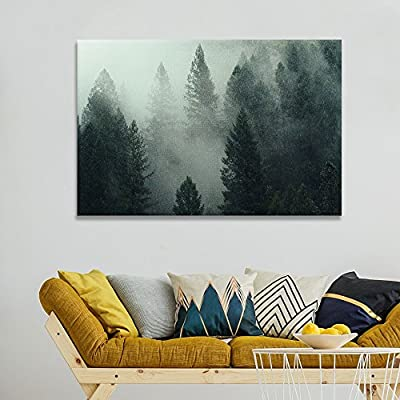 Pine Forest in The Fog, Premium Creation, Gorgeous Picture