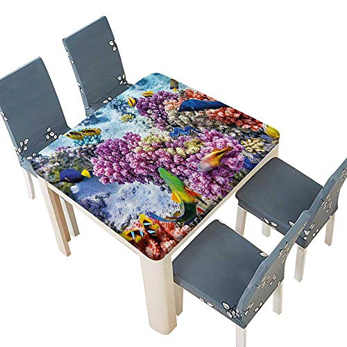 (PINAFORE Spring & Summer Outdoor Tablecloth, Surreal of Marine Life with Submerged Coly of Pillar Corals Aquatic Multicolor 65 x 65 INCH (Elastic Edge))
