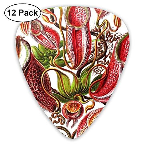 - Classic 351 Shape Plants Pitcher Plants Tropical Celluloid Guitar Pick For Electric Acoustic Mandolin Bass, 12 Pack