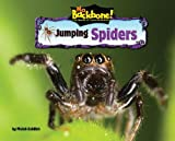 Jumping Spiders, Meish Goldish, 1597167053