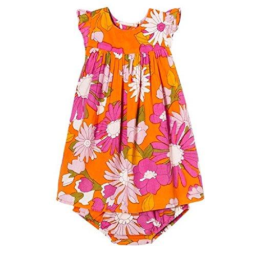 Pink Chicken Infant Happy by A Line Citrus Orange Flowered Dress (6-12)
