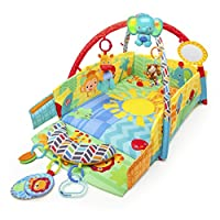 Bright Starts Sunny Safari Baby's Play Place