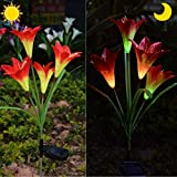 Chasgo Outdoor Decorative Solar Lily Flower Stake Light, Multi-Color Changing LED Flower Light for Garden Yard Lawn Decoration, Orange Solar Lily