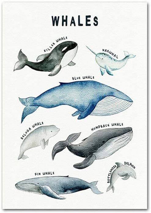 HD Print Picture Wall Painting Whales Shark Dinosaurs Chart Child Nordic Poster Educational Nursery Art Canvas No Frame Home Decor