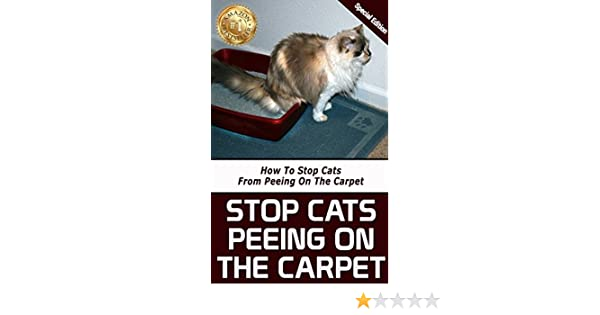 best way to stop cat peeing on carpet