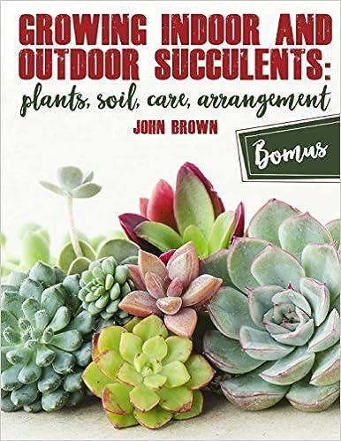 Arrangement Growing Indoor and Outdoor Succulents:: Plants Soil Care