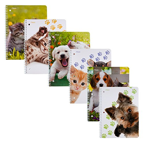 Mead Notebooks Subject Assorted 73084