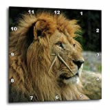 3D Rose Portrait of African Wildlife Lion Animal Style Wall Clock, 15'' x 15''