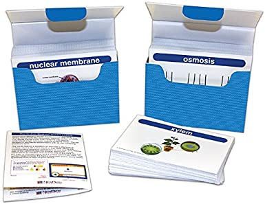 newpath learning 44 6017 life science vocabulary builder flash card