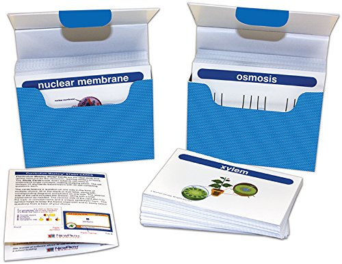 NewPath Learning 44-6017 Life Science Vocabulary Builder Flash Card Set, Grade: 6 to 10
