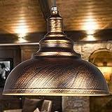 WINSOON 1PC Modern Style Metal Ceiling Lamp Wall Vintage Loft Pendant Light Retro Industrial (Brown)