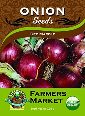 Toland Home Garden Organic Red Marble Onion Seeds