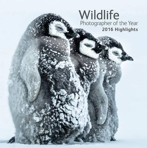 Wildlife Photographer of the Year: 2016 Highlights (Natural History Museum Photographer Of The Year 2016)