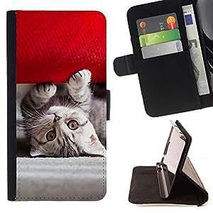 Momo Phone Case / Flip Funda de Cuero Case Cover - Gatito americano lindo;;;;;;;; - Samsung Galaxy S5 Mini, SM-G800