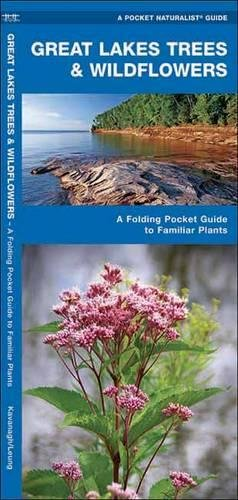 Great Lakes Trees & Wildflowers: A Folding Pocket Guide to Familiar Species (A Pocket Naturalist Guide) (Great Plant Guide)