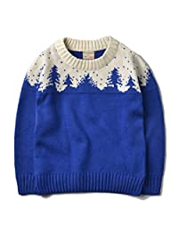 AIKSSOO Toddlers Little Boys Christmas Tree Sweater Winter Fall Knit Pullover