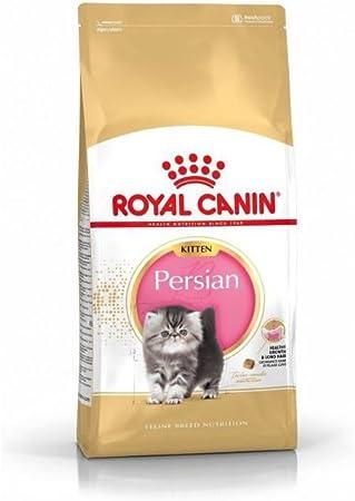 ROYAL CANIN - Persian pienso para Gatitos de Raza Persa: Amazon.es ...
