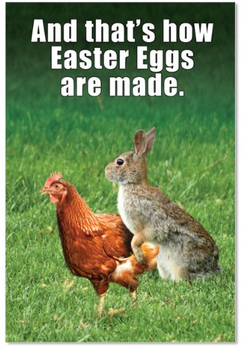 """9858 'Easter Eggs Made' - Funny Easter Greeting Card with 5"""" x 7"""" Envelope by NobleWorks"""