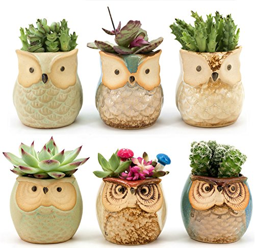 Outdoor Vase (Weierken Mini 6PCS Owl Pot Ceramic Flowing Glaze Base Serial Set Succulent Plant Pot Cactus Plant Pot Flower Pot Container Planter Bonsai Pots with A Hole)