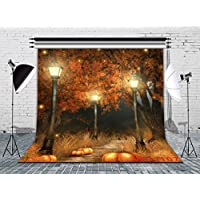 LB 8x8ft Halloween Photography Backdrop Vinyl Customized Halloween Decor Photo Background Studio Prop WSJ167