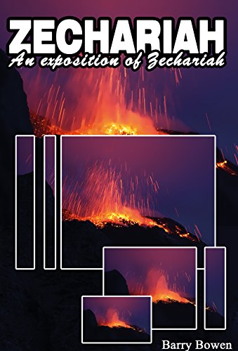 Zechariah: An exposition of the prophecy of Zechariah (The 66 Books)