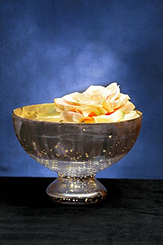 bowl-glass-pedestal-silver-mercury-725-inches