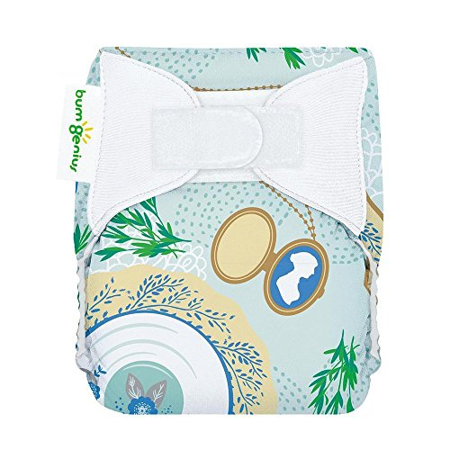 bumGenius All-in-One Newborn Cloth Diaper - Fits Babies 6 to 12 Pounds (Austen)