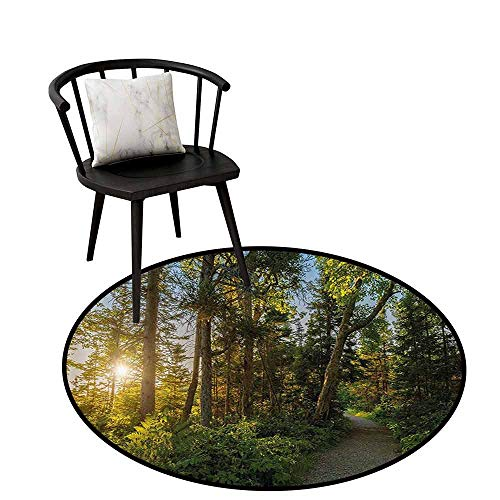 Warm Round Rug Landscape for Bedroom National Park in Cape Breton Highlands Canada Forest Path Trees Tranquility Photo Blue Green D35(90cm)