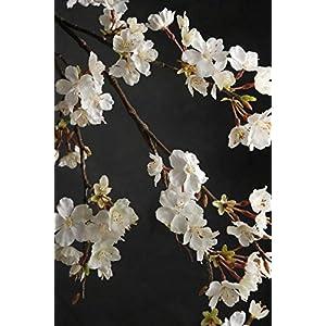 "Richland Cherry Blossom Branch 42"" White Flowers 94"