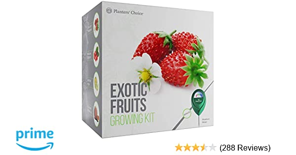 Planters' Choice Exotic Fruits Growing Kit - Everything Included to Easily  Grow 4 Unique Fruits - Strawberries, Goji Berries, Honeydew, Watermelon +