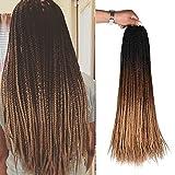 AliRobam Hair 24Inch 22Strands 6Packs Senegalese Twist Box Braids Crochet Hair Extensions Ombre