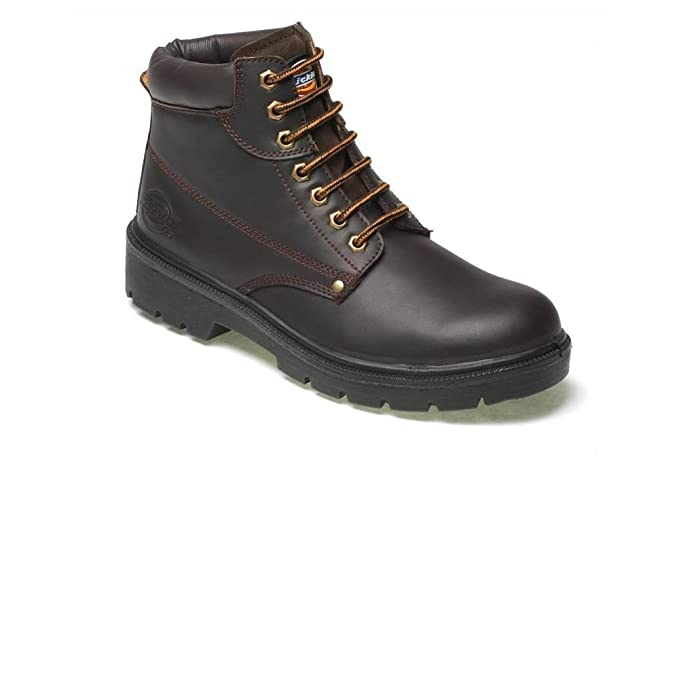 Dickies Workwear Resistente al Agua Antrim Seguridad Botas – marrón – 10, Color Marrón,