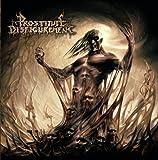 Descendants Of Depravity [CD/DVD Combo] by Willowtip (2009-05-05)