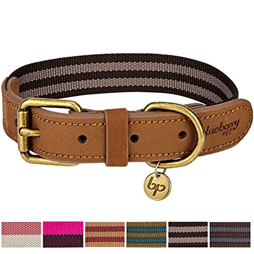 Blueberry Pet 6 Colors Vintage Staple Striped Soft Genuine Leather and Polyester Webbing Dog Collar in Chocolate and Taupe, Medium, Neck 15