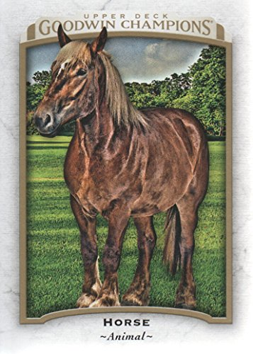 2017 Upper Deck Goodwin Champions #13 Horse Animal from Upper Deck Goodwin Champions