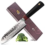 TUO Cutlery Santoku Kitchen Chef Knife - Japanese AUS-10 Damascus Steel- G10 Handle- Ring D Series Santoku Knives