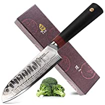 TUO Cutlery Santoku Knife - Damascus Kitchen Chefs Knives - Japanese AUS-10 HC StainlessSteel Cutting Core Blade - G10 Handle - Gift Box