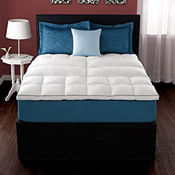 Amazon Com Pacific Coast Deluxe Lumbar Feather Bed