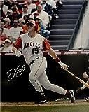 Tim Salmon Autographed Photo - 16x20 At Bat Big Swing - Autographed MLB Photos
