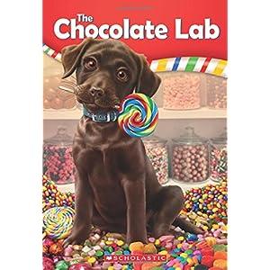 The Chocolate Lab (The Chocolate Lab #1)