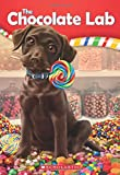 The Chocolate Lab (The Chocolate Lab #1)